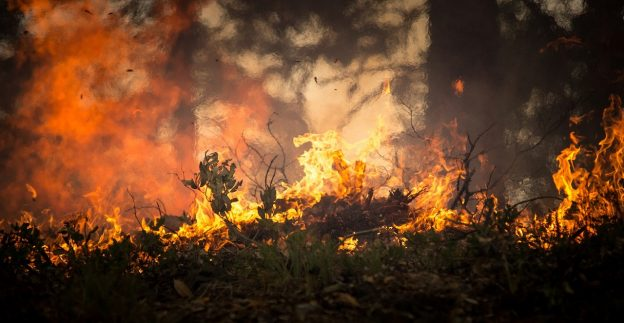 California wildfire